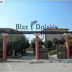 HOTELUL BLUE DOLPHIN 3*+ METAMORFOSI
